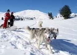 enfants initiation evasion neige
